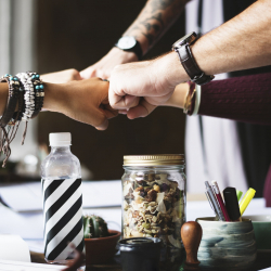 The 5 Things You Need For A Successful Pitch